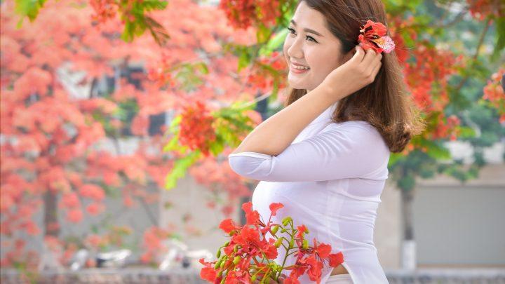 """Thiếu nữ Hà thành mơ màng bên hoa phượng """"rực cháy"""""""