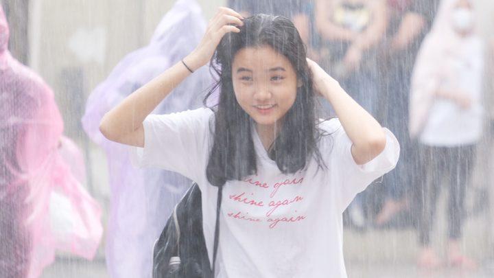 Đội mưa – Dương Tâm